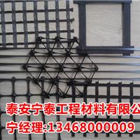 供应辽宁渣场专用塑料格栅TGSG45-45