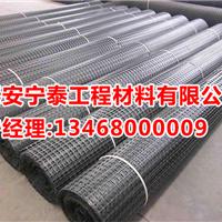 供应贵州渣场专用土工格栅TGSG100-100