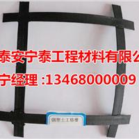 供应山东GSZ钢塑格栅,质优价廉