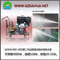 供应达华DH390-190Z高压森林消防水泵
