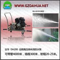 供应达华DH200中型远程高压森林消防水泵