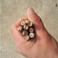 浙江台州纯木屑生物质颗粒燃料