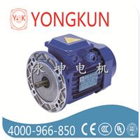 供应Y2电磁制动三相异步电机0.75KW