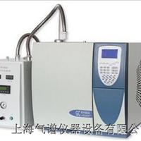 供应苯并呋喃甲酰氯分析专用气相色谱仪
