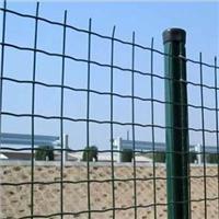 供应1米高优质荷兰网,养殖用围网