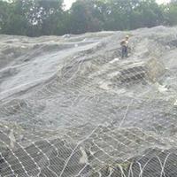 安平县国贸山体滑坡防护筛网厂