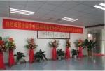 深圳市中霖中科环境科技有限公司