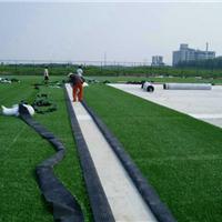供应武汉人工草坪厂家 景观草坪 球场草坪