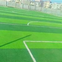 供应塑胶跑道人造草坪悬浮地板橡胶地板pvc