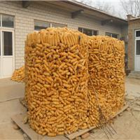 1.8米圈玉米铁丝网使用快捷方便可起到防鼠防潮作用