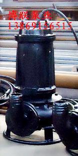 工厂沉淀池排渣泵-废渣泵-抽浆泵