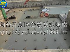 山东鲁蒙牌LM聚合物水泥砂浆防水胶