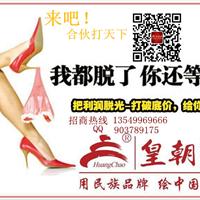 皇朝漆招商加盟  油漆涂料工创业平台