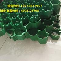 专业生产2公分植草格