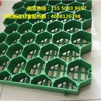 天津植草格价格低质量高