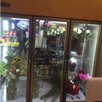 佳伯立式风冷鲜花柜 福州鲜花店保湿展示柜