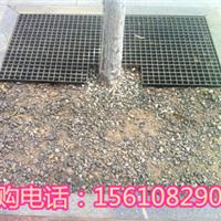 潍坊市玻璃钢树圈