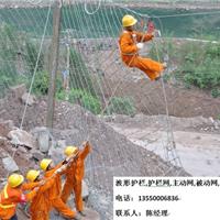 供应RX-025落石防护RX025被动拦石网