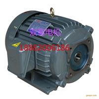 厂家直销内插式直连台款VP20-30-40电机
