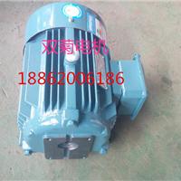 厂家批发零售内插式直连CB-N齿轮泵电机