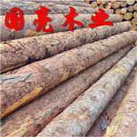 供应落叶松打桩木白松煤矿坑木松木桩