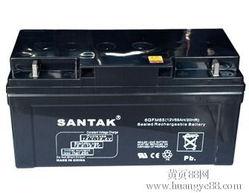供应山特蓄电池代理