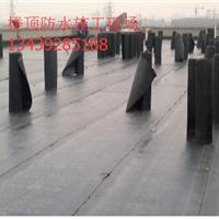 供应北京昌平区专业屋顶做防水s