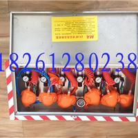 供应ZYJ-A箱式压风自救装置,压风自救器