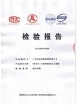 CMDS20-2检验报告
