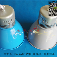 供应LED生鲜灯省电绿色红色猪肉灯外壳厂家