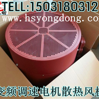 现有变频电机散热风扇,YVF变频电机专用