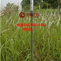 凌澜lw05七彩芦苇灯参数经过检测安全环保