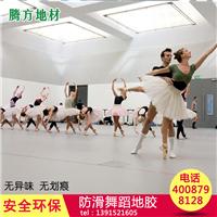 南京幼儿园儿童舞蹈教室PVC地胶