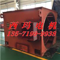 供应西玛牌Y4007-6 400KW 6KV高压电机