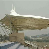 安装建筑膜结构工程 看台景观膜结构遮阳蓬