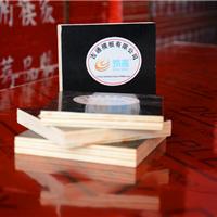 山东济南建筑模板 竹胶板 木方