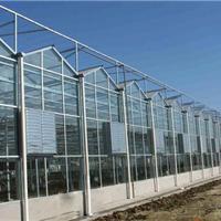日本进口农用膜旭硝子ETFE膜温室阳光房