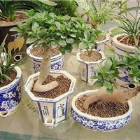 建筑陶粒 园林陶粒 回填陶粒 文化陶沙