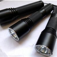 SW2120微型电筒 SW2120电筒价格SW2120厂家