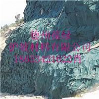 供应葆绿矿山复绿袋  荒山复绿工程生态袋