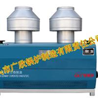 供应大气式燃气热水锅炉