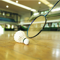 供应运动地胶|羽毛球塑胶地板