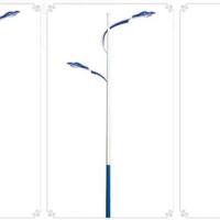 扬州弘旭照明全年供应道路10米双臂灯杆
