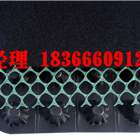 泰安盛阳土工合成材料有限公司