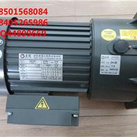 100W200W400W750W士元电机SHIYUAN电机