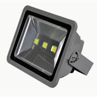 IP65户外防水景观灯150W
