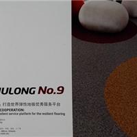 大巨龙NO.9塑胶地板厂家直销