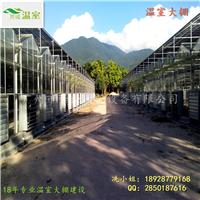 供应玻璃温室/高档温室/温室大棚