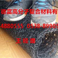 厂家生产优质渗排水盲沟  RCP-0538-8990538