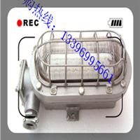 DGS36/127L支架灯